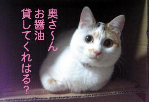 Oshouyu