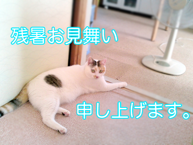 Nishibi_5