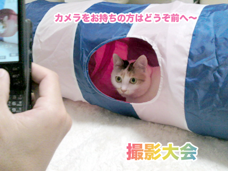 Tunnel_4
