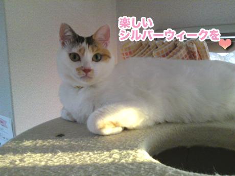 Yuhi_3