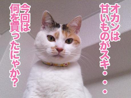 Milky_1_2