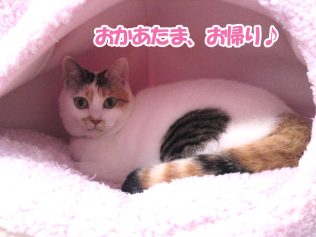 Karuizawa_3