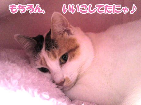 Karuizawa_4
