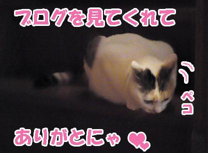 Misoka_1