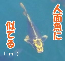 Misoka_2_2