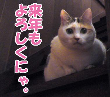 Misoka_3