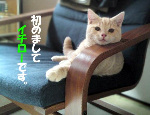 Ichiro_1