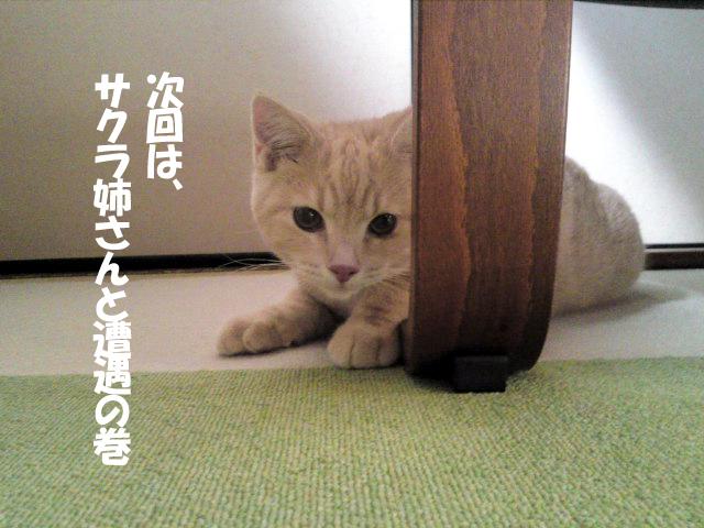 Ichiro_4